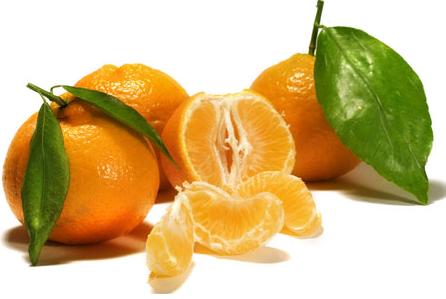 Купить мандарины оптом из Китая
